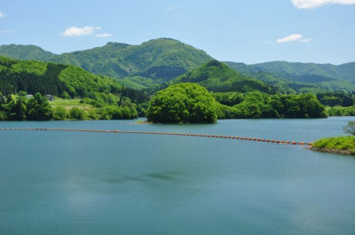 夏の緑の島々と青い海