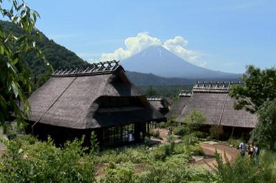 夏の田舎の風景と富士山