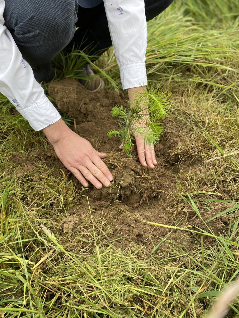 Développer un réseau écologique