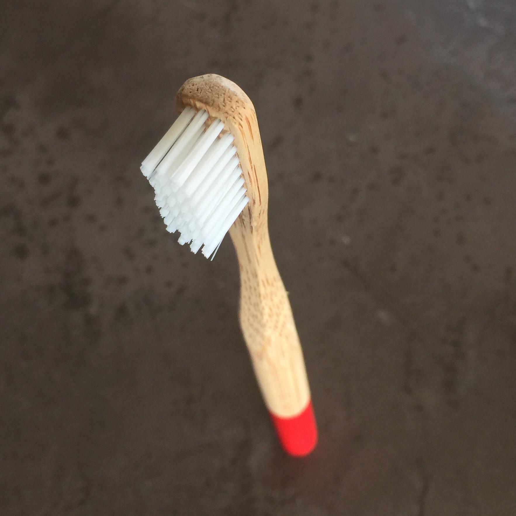brosse à dent / zahnbürste