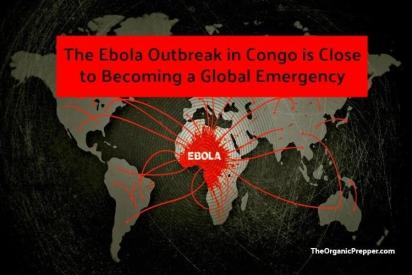 https://i0.wp.com/www.zerohedge.com/s3/files/inline-images/ebola-1.jpg?resize=412%2C275&ssl=1