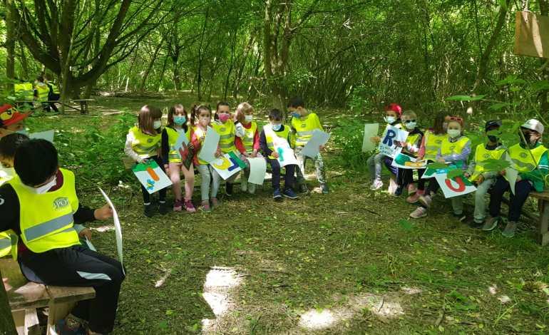 C'è una scuola nel bosco