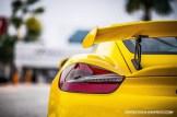 Cayman GT4 (1)
