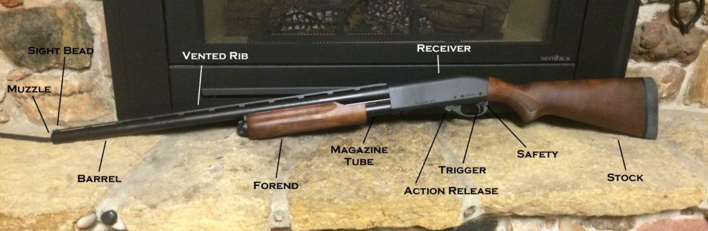 buy your first gun