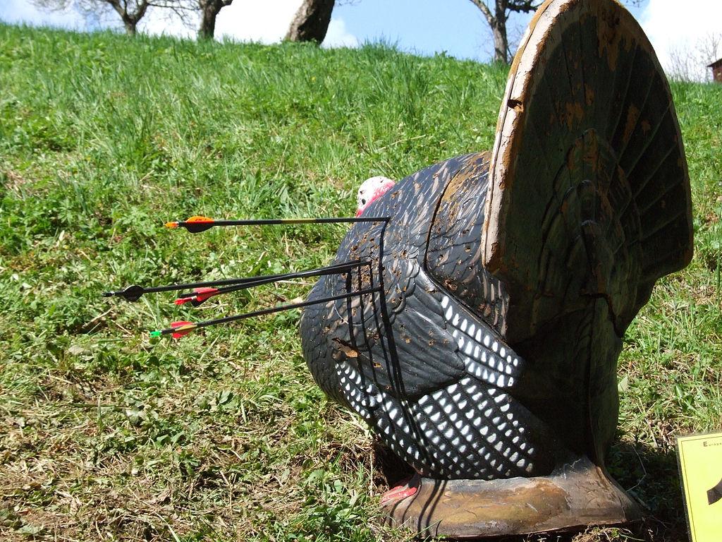 archery lessons part 1 u2013 basic archery equipment zero to hunt