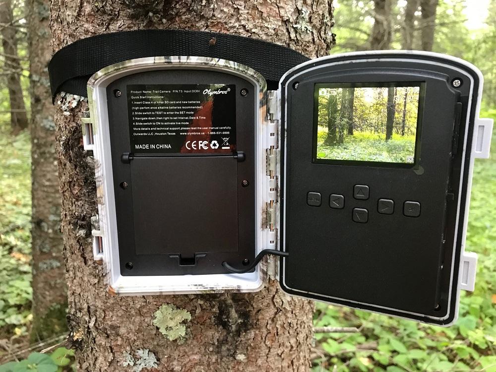 trail camera settings