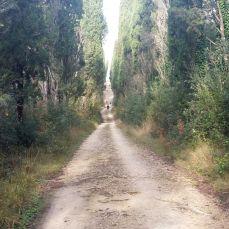 Viali di Stigliano