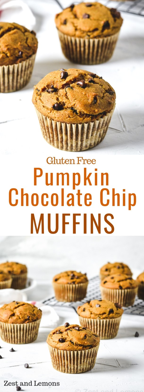 Gluten free pumpkin chocolate chip muffins. These muffins are thick, yet very moist and fluffy and are loaded with mini chocolate chips - Zest and Lemons