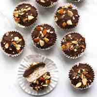 Chocolate Coconut Almond Bites