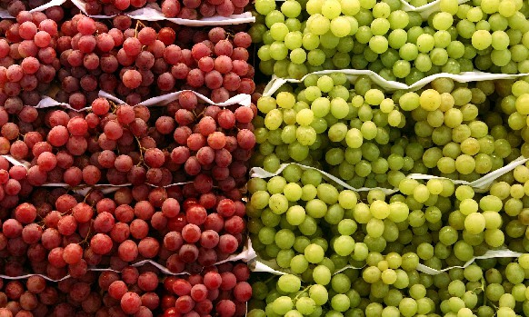 Strong end expected for South African grapes