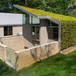 Bay Village Green Roof Residence