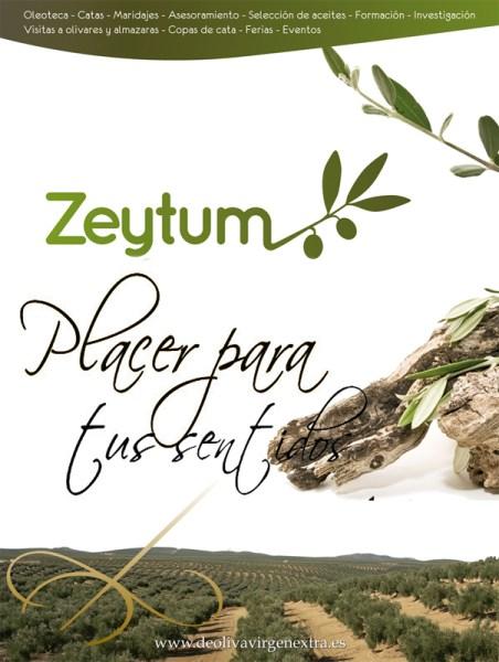 zeytumplacer2