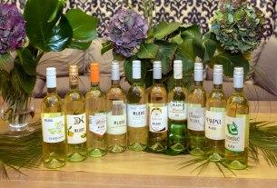 mlado međimurje - sajam međimurskih vina 2019
