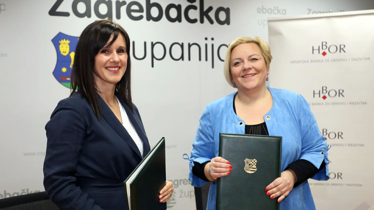 danijela maršić peica i nadica žužak - 2020