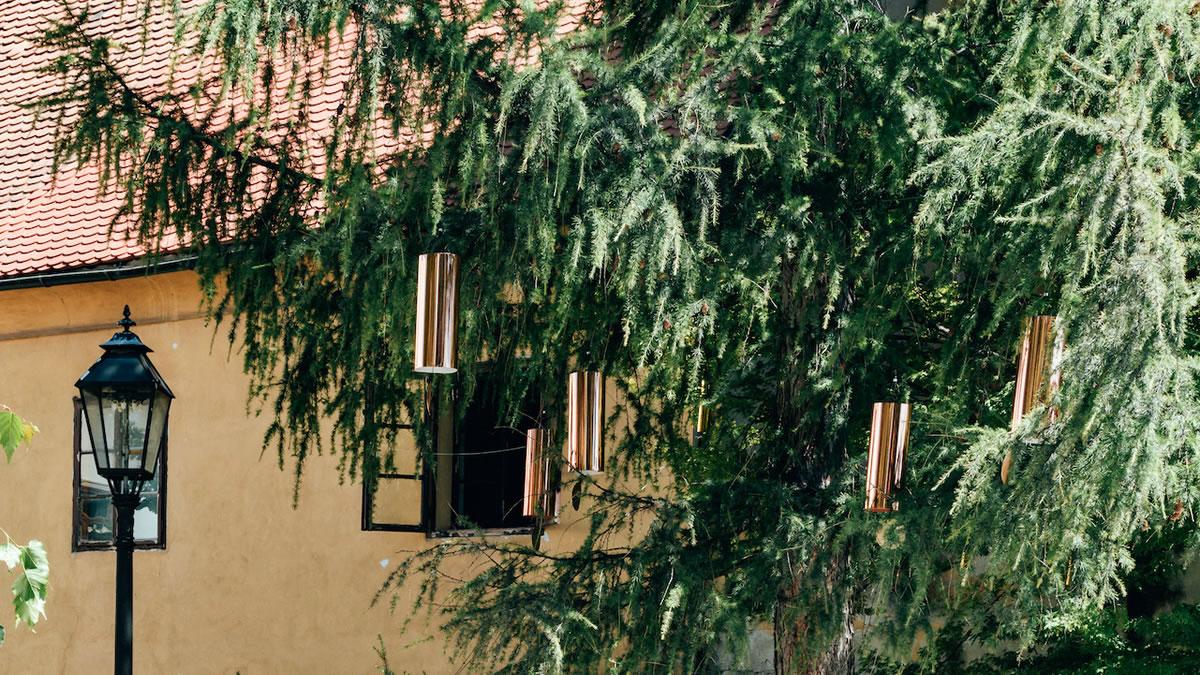 okolo - singing forest - ida blažičko i alex brajković - park bele iv, gornji grad, zagreb - 2020