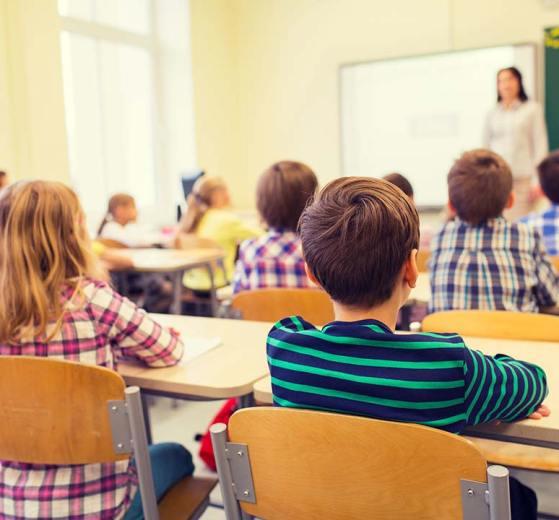 Живые уроки, школы, законопроект, Минобрнауки РФ, Образование, школы России, дети, школьники, закон
