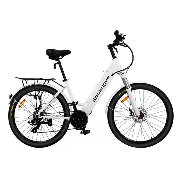 bafang mid drive motor electric mountain bicycle