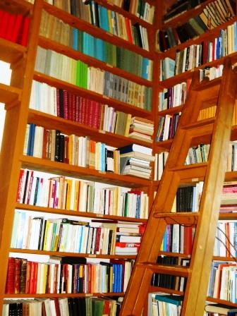 Din grajdul mănăstirii, în biblioteca din turnul Arhiepiscopiei