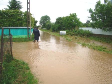 Ploile torenţiale au făcut ravagii