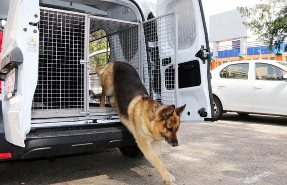 Câinii poliţişti au maşină nouă