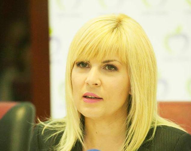 Elena Udrea vrea proces pe Lună