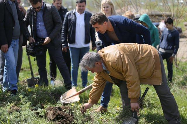 Președintele CJ Neamț a plantat puieți alături de elevi și voluntari