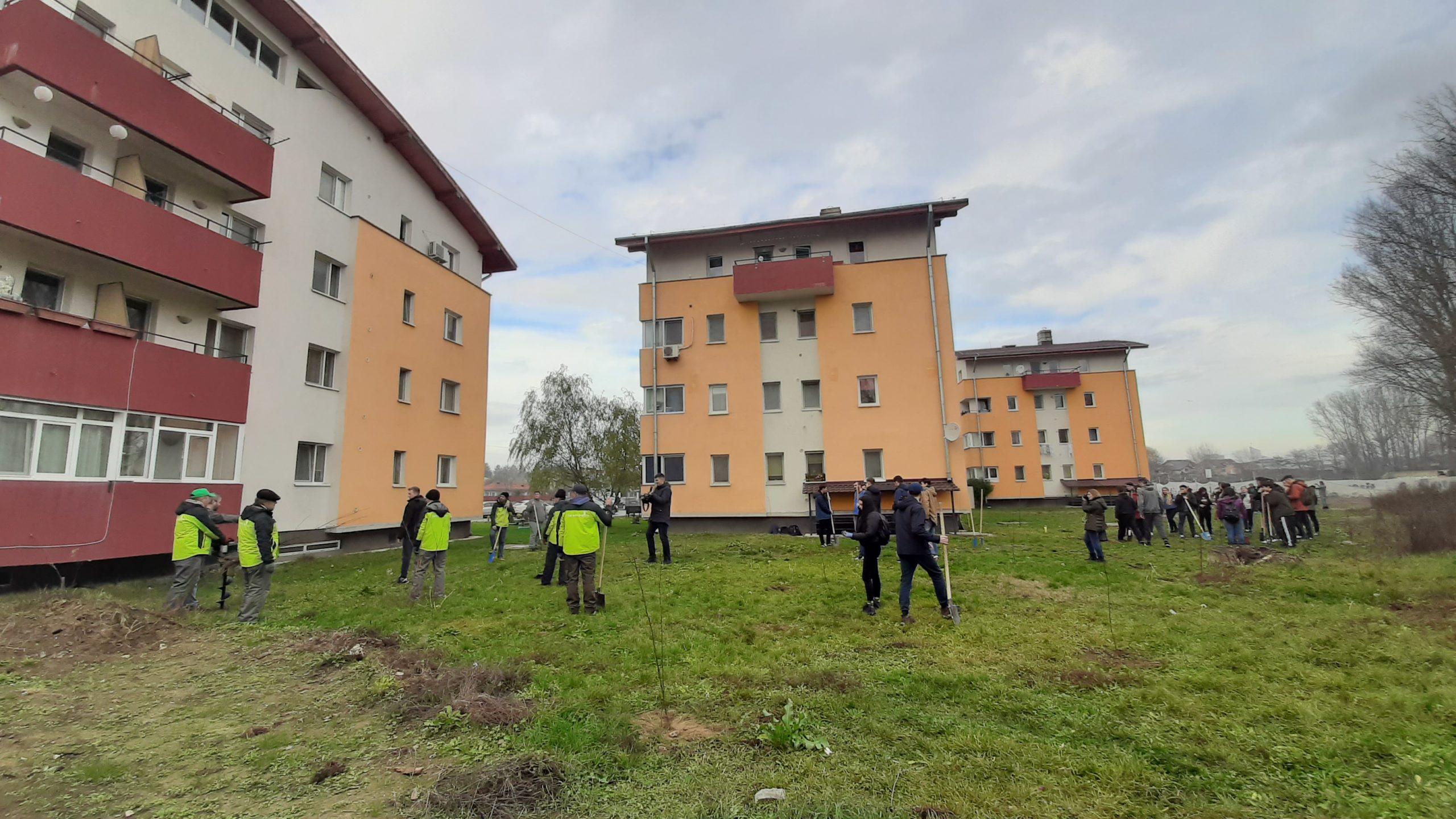 Elevii romașcani și echipa Fereastra 1 au plantat sute de puieți în cartierul ANL Vasile Lupu