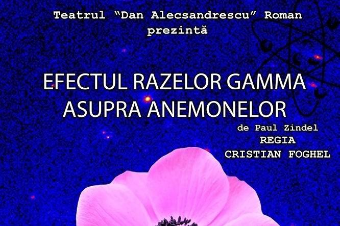 """Teatrul """"Dan Alecsandrescu"""" prezintă piesa """"Efectul razelor gamma asupra anemonelor"""""""