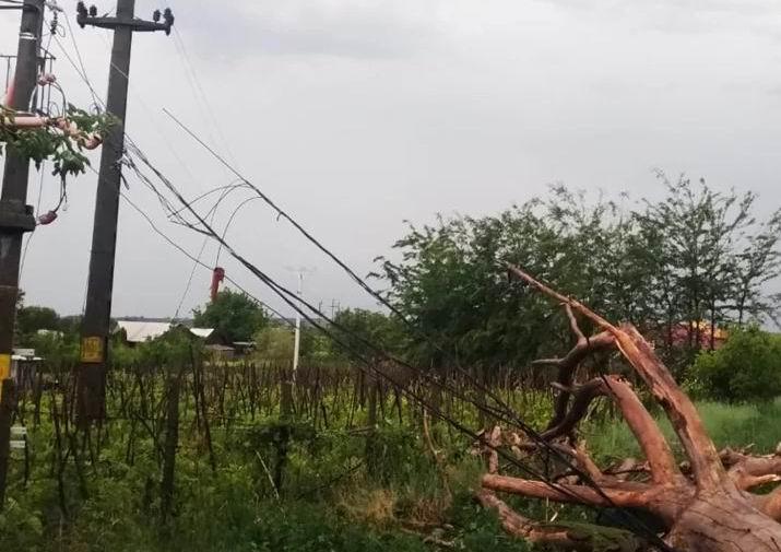 Pagubele furtunii de joi: localități fără curent electric, arbori căzuți peste mașini, stâlpi de electricitate distruși