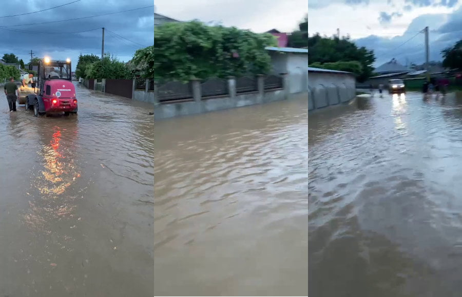Pagubele produse de ploile de joi: gospodării inundate, copaci prăbușiți peste case și firele electrice