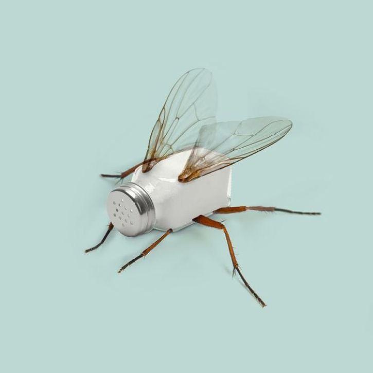 Le creature impossibili nate dalla fantasia di un'agenzia creativa francese