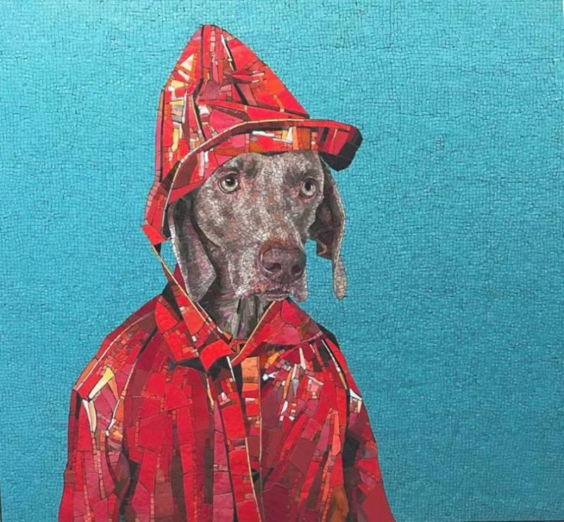 i cani in costume di Franz Mayer
