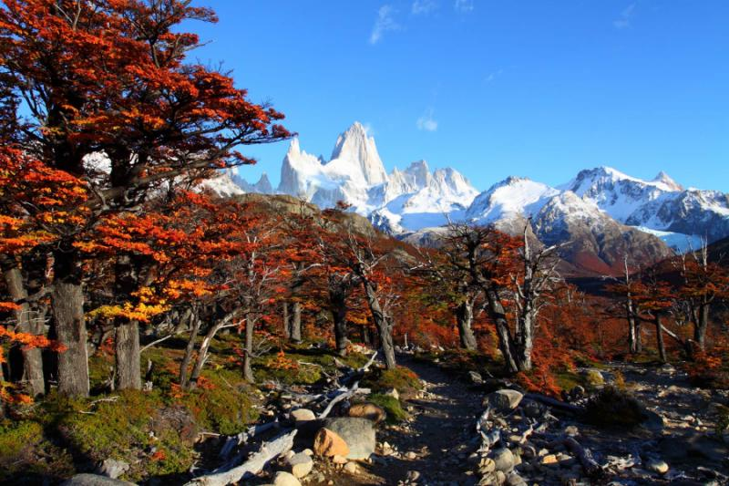 Fall Down Wallpaper Romantic Getaway To Patagonia Luxury Amp Adventure Zicasso