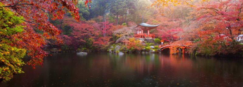 Japan Photography Tour Cities Castles Landscapes