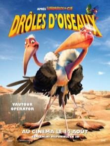 drôles d'oiseaux5