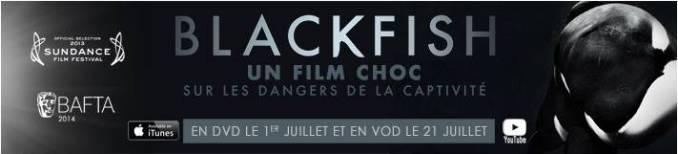 Blackfish direct to DVD