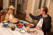 Absolutely Anything-image 2