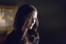 Vampire Diaries (8)