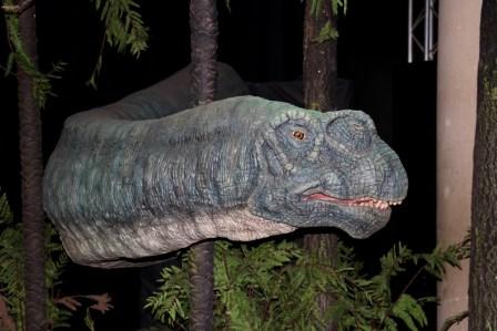 Expo autour des dinosaures15