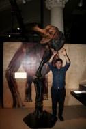 Expo autour des dinosaures22