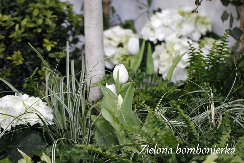 Biały ogród