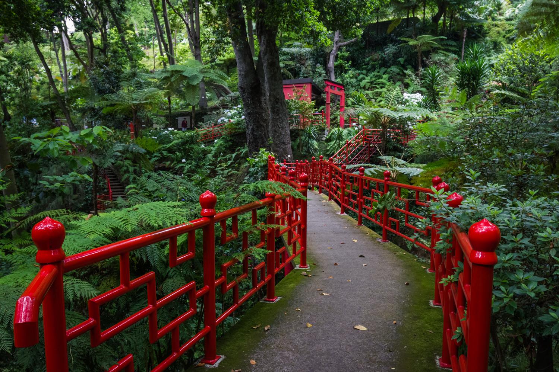 Rośliny tropikalne, sztuka, orient iazulejos. Tozabaczysz naMaderze wMonte Palace Tropical Garden.