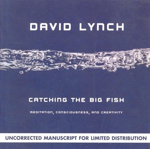 Catching the Big Fish: Meditation. Consciousness. and Creativity | David Lynch