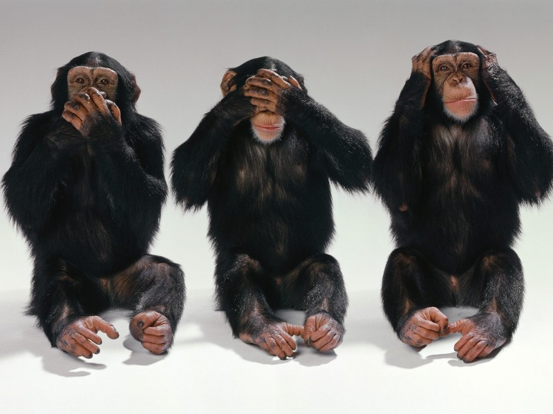hear no evil speak no evil photo - Lawsuit Pierces Medical Code of Silence, Says NY Medical Malpractice Lawyer