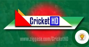 Cricket HD