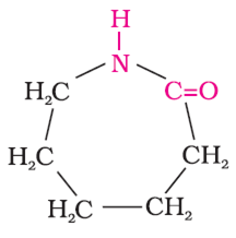 Write the free radical mechanism for the polymerization of