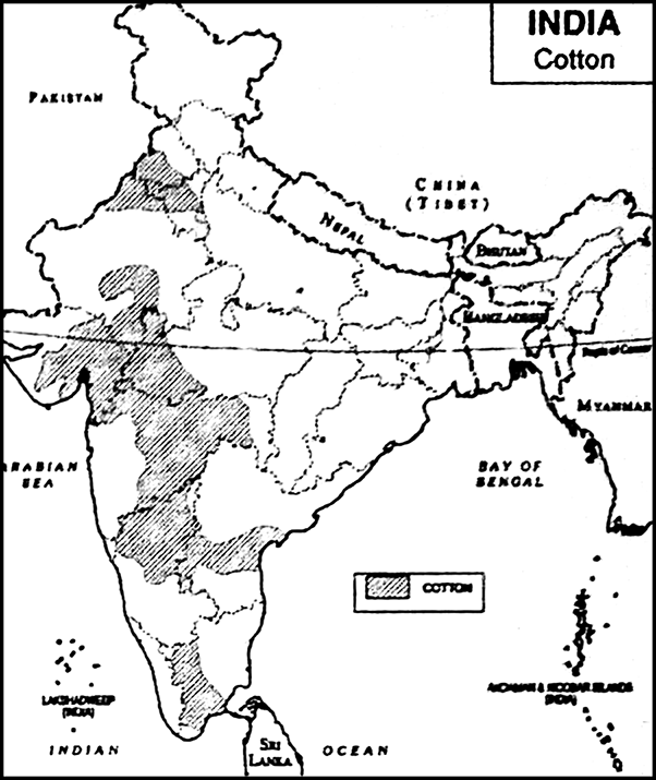 Mention the important cotton-growing areas in India show