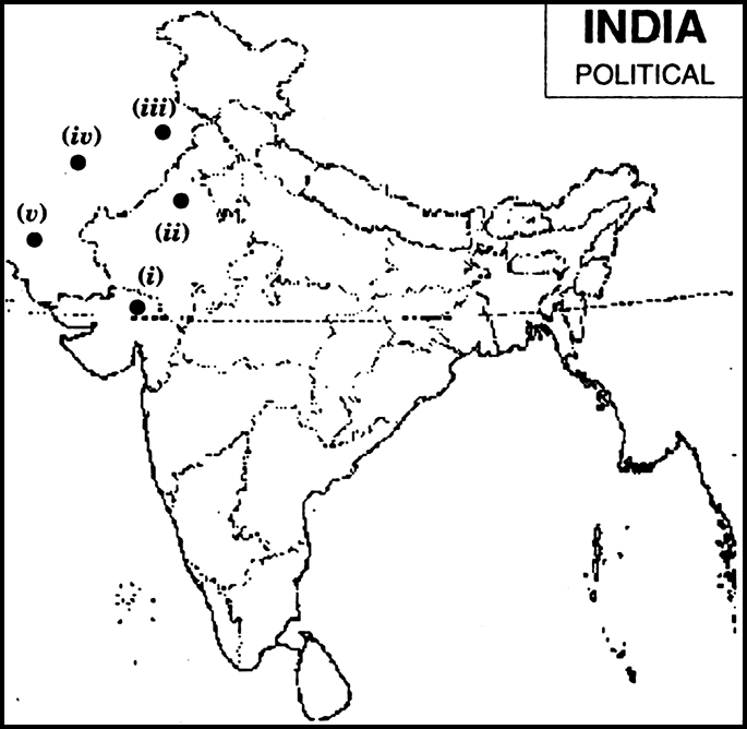 On the given political outline map of India mark and label