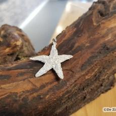 Zilveren zeester schelphanger medium