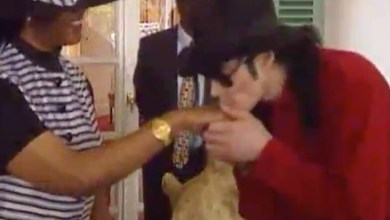 Photo of Bizarre video shows Michael Jackson meeting Mugabe, kissing Grace's hand at State House